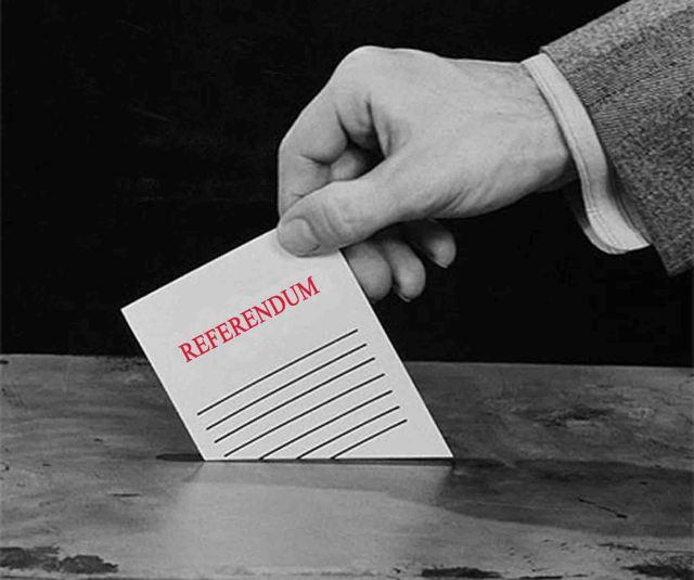 referendum_immagine